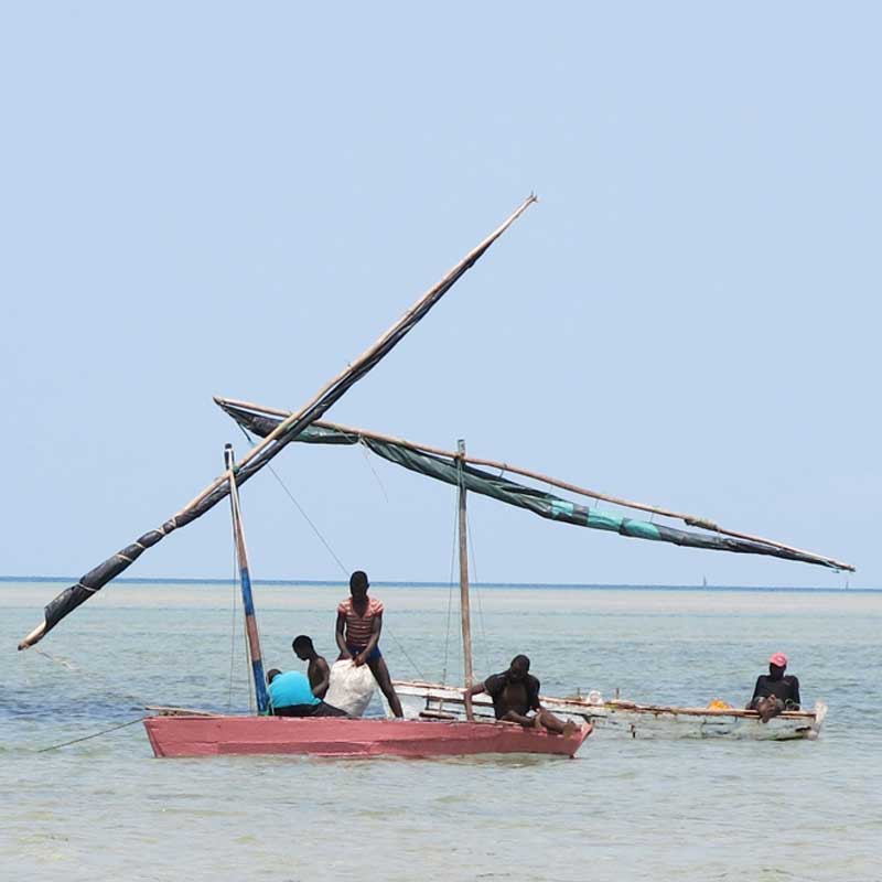 local fishermen in their dhow