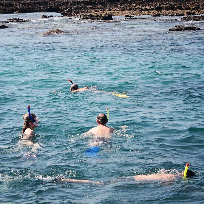 guests snorkelling at 2 mile reef in mozambique