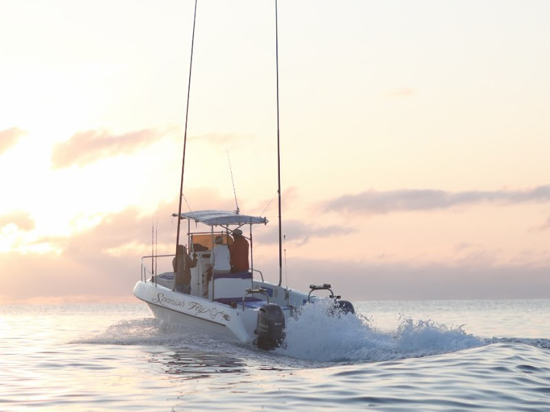 mozambique fishing charters